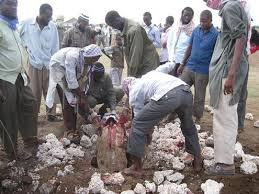 somalia adultery
